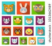 muzzles of animals flat icons... | Shutterstock . vector #1013662489