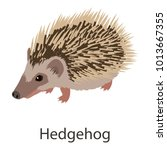 hedgehog icon. isometric... | Shutterstock .eps vector #1013667355