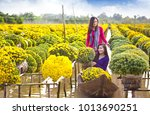 sa dec flower village   sa dec... | Shutterstock . vector #1013690251