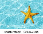 Starfish In Blue Water With...