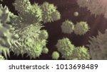 pathogen virus bacteria... | Shutterstock . vector #1013698489