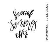 special spring offer   hand... | Shutterstock .eps vector #1013708227