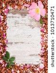 Frame Of Dried Wild Rose Petal...