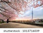 tokyo  japan   april 12  2017 ... | Shutterstock . vector #1013716039