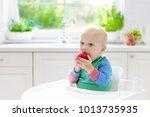 baby eating fruit. little boy... | Shutterstock . vector #1013735935