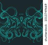 the couple octopus on dark... | Shutterstock .eps vector #1013749669