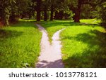 divergence of paths in the park | Shutterstock . vector #1013778121