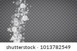 winter frame with white... | Shutterstock .eps vector #1013782549
