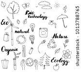 ecology vector doodle set  hand ...   Shutterstock .eps vector #1013788765
