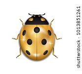 ladybug gold insect small icon. ... | Shutterstock .eps vector #1013851261