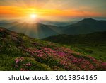 scenic image red spring... | Shutterstock . vector #1013854165