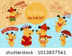 vector set of illustrations of... | Shutterstock .eps vector #1013857561