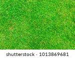 green grass texture | Shutterstock . vector #1013869681