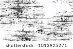grainy black and white distress ... | Shutterstock .eps vector #1013925271
