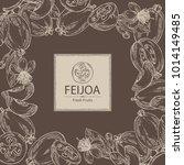background with feijoa fruit ...   Shutterstock .eps vector #1014149485