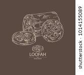 loofan  natural sponge  loofan...   Shutterstock .eps vector #1014155089