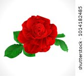 rose red and leaves  on a white ... | Shutterstock .eps vector #1014182485