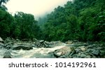 Turbulent River In The...