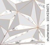 vector marble texture design... | Shutterstock .eps vector #1014236071