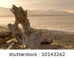 Wild Beach Landscape With...
