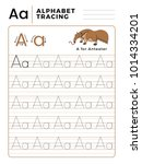 letter a alphabet tracing book... | Shutterstock .eps vector #1014334201