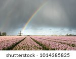 a rainbow under heavy clouds... | Shutterstock . vector #1014385825