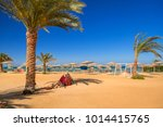 camel resting in shadow on the... | Shutterstock . vector #1014415765