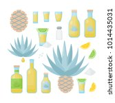 tequila and blue agave vector... | Shutterstock .eps vector #1014435031