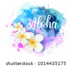 purple and blue colored... | Shutterstock .eps vector #1014435175