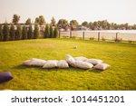 beautiful greenery as a... | Shutterstock . vector #1014451201