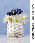 bouquet with snowdrops and blue ... | Shutterstock . vector #1014463099