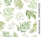 forest greenery. watercolor... | Shutterstock .eps vector #1014464131