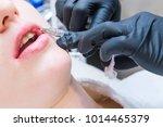 contour plastic  dermatologist... | Shutterstock . vector #1014465379