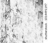 texture grunge monochrome.... | Shutterstock . vector #1014491197