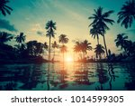 palm trees silhouettes at... | Shutterstock . vector #1014599305