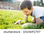 nice surprised boy sitting grass | Shutterstock . vector #1014691747