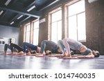 attractive young sport girls... | Shutterstock . vector #1014740035
