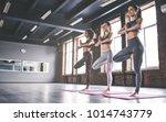 attractive young sport girls... | Shutterstock . vector #1014743779