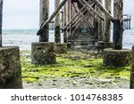 wooden sea dock pillars in the... | Shutterstock . vector #1014768385