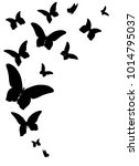 black butterfly  isolated on a... | Shutterstock . vector #1014795037