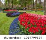 Lisse  Netherlands   April 19 ...