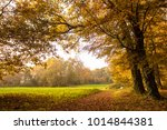 a tranquillity space outdoor | Shutterstock . vector #1014844381