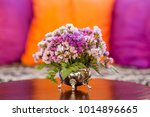 the violet or pink flowers in... | Shutterstock . vector #1014896665