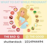 pregnant woman diet infographic.... | Shutterstock .eps vector #1014944494