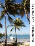 exotic seascape   isla mujeres  ... | Shutterstock . vector #1014987559