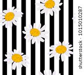 Daisy Flowers. Seamless Pattern....
