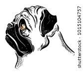 Vector Image Of A Pug's Head....