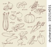set of vegetables doodles vector | Shutterstock .eps vector #101514031