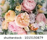closeup of a pastel colored... | Shutterstock . vector #1015150879