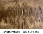 tree shaped pattern on the sand ... | Shutterstock . vector #1015196551